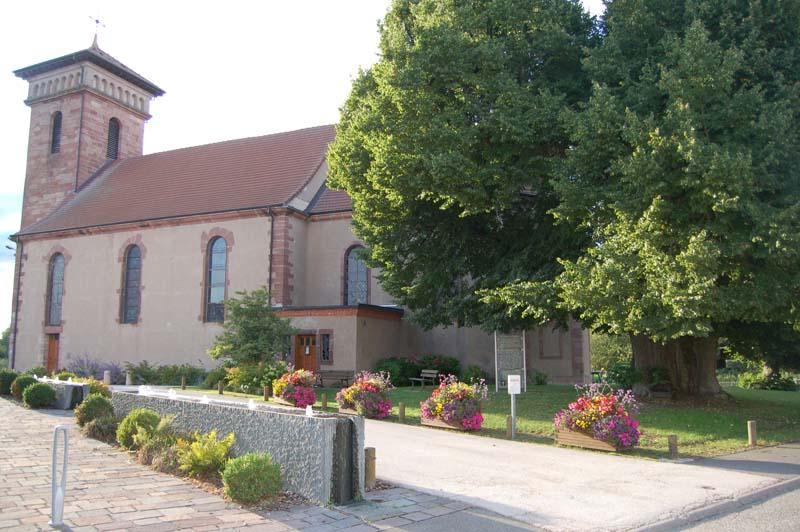 le tilleul et l'église de fontaine